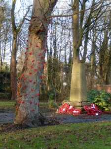 Poppies at the war memorial by Lee Cheetham